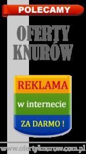 ofertyknurow